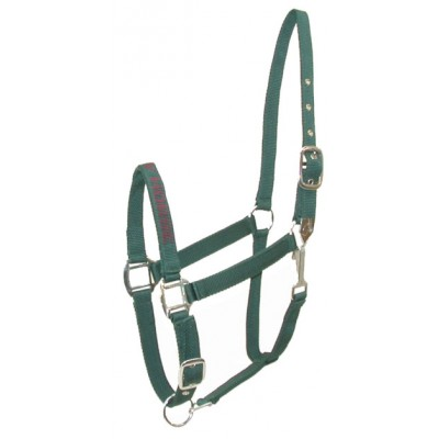 I LOVE MY HORSE Nylon Halter