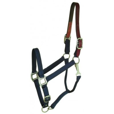 Classic Nylon Breakaway Halter with Snap
